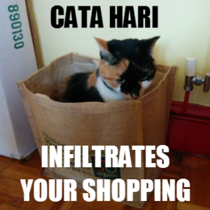 Cata Hari infiltrates your shopping...